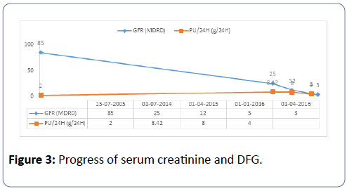 clinical-experimental-nephrology-serum-creatinine