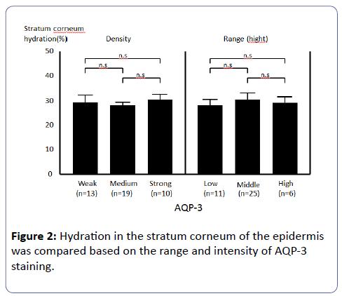 clinical-experimental-nephrology-stratum-corneum